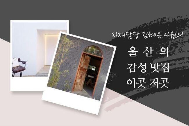 자재담당 사원의 울산의 감성 맛집 소개