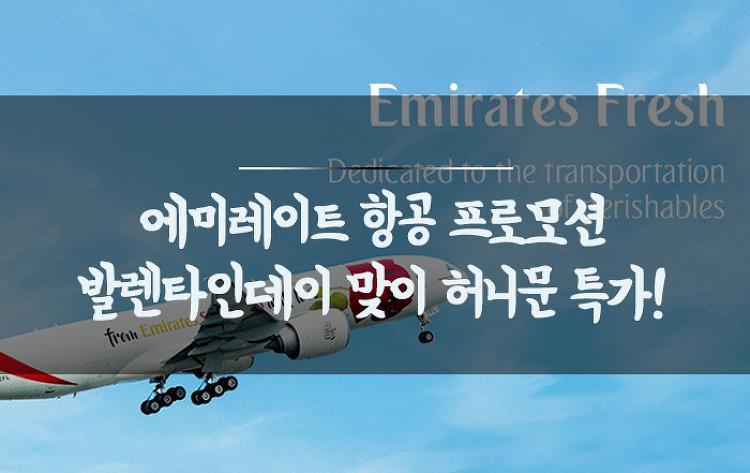 [아랍에미레이트항공특가] 허니문 노선 특가 (~2/23) /..