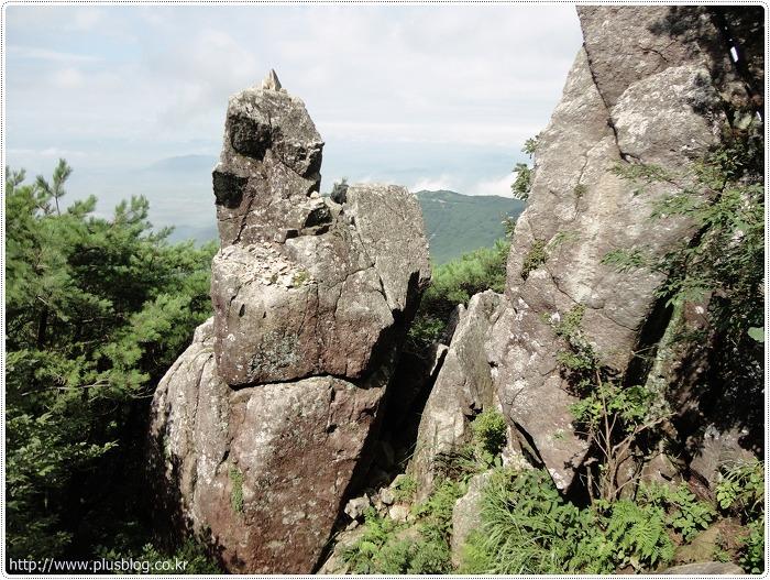 비슬산 등산코스