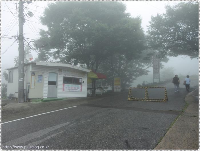 비슬산 가는법 교통편