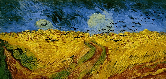 wheat crows