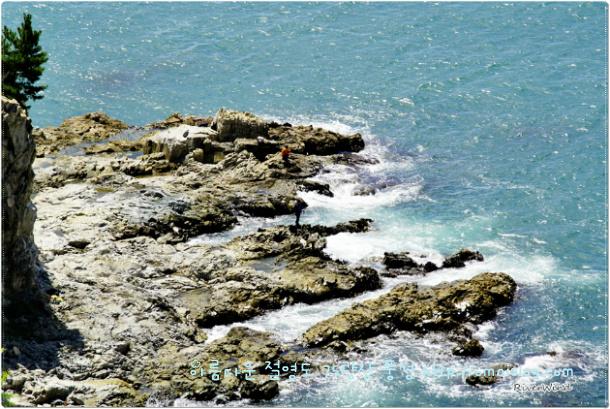 75광장 바로 아래 해안 갯바위