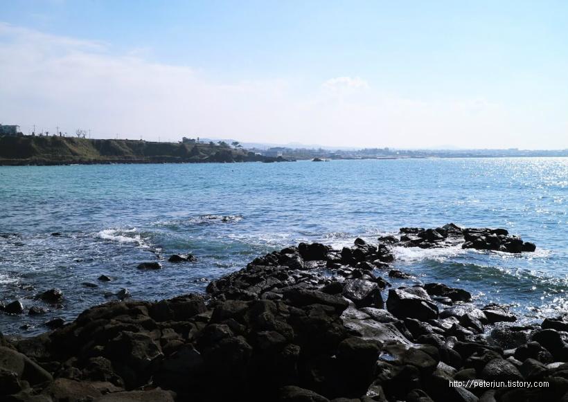 푸른 바다