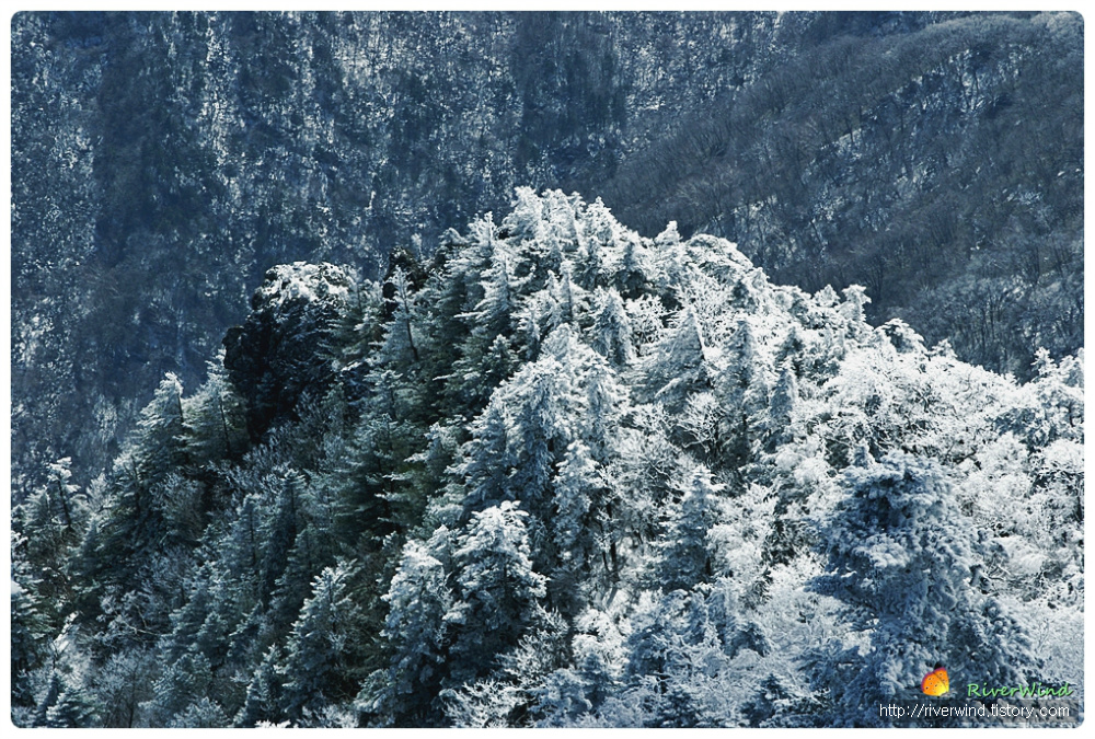 경이로운 자연(自然)  지리산 풍광