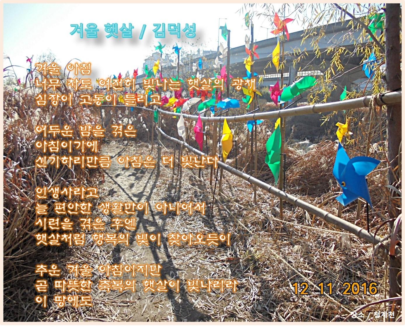 이 글은 파워포인트에서 만든 이미지입니다.  겨울 햇살  / 김덕성