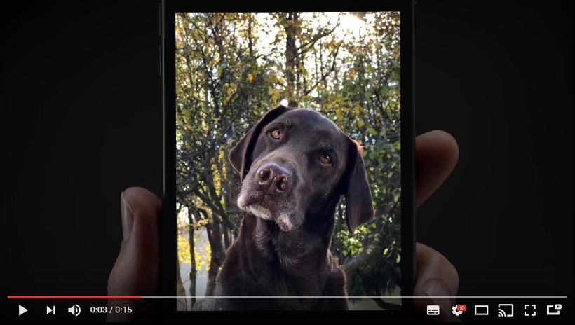아이폰7플러스 광고 포트레이트모드 소개(Portrait Mode) CF