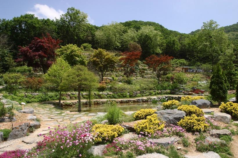 한택식물원 봄꽃페스티발