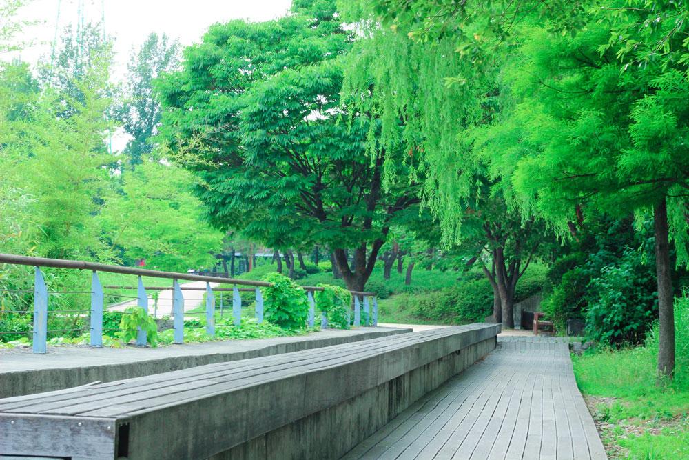 선유도 공원 시간의 정원 뒤쪽