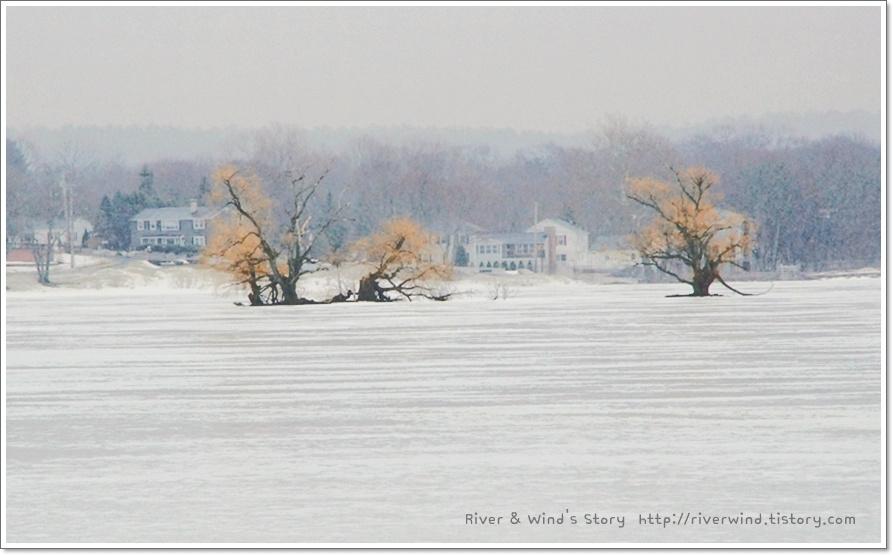 얼어붙은 호수
