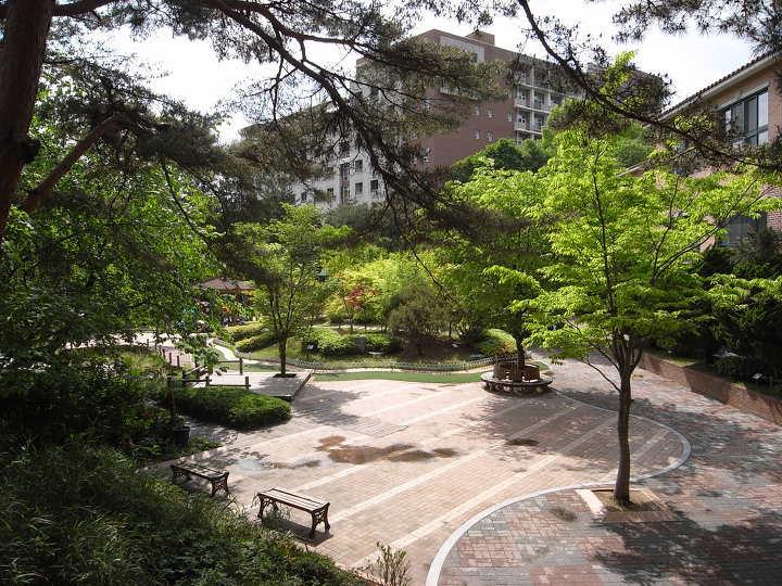 화랑초등학교 학교숲