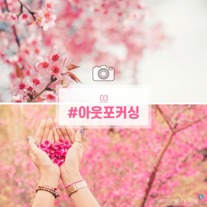 벚꽃사진 #아웃포커싱