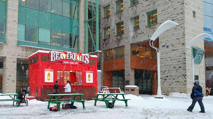 캐나다에서 꼭 먹어야 할 음식 비버테일 입니다