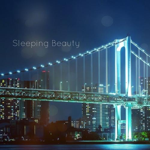 Paul - Sleeping Beauty (하트시그널 삽입곡) [듣기/가사]