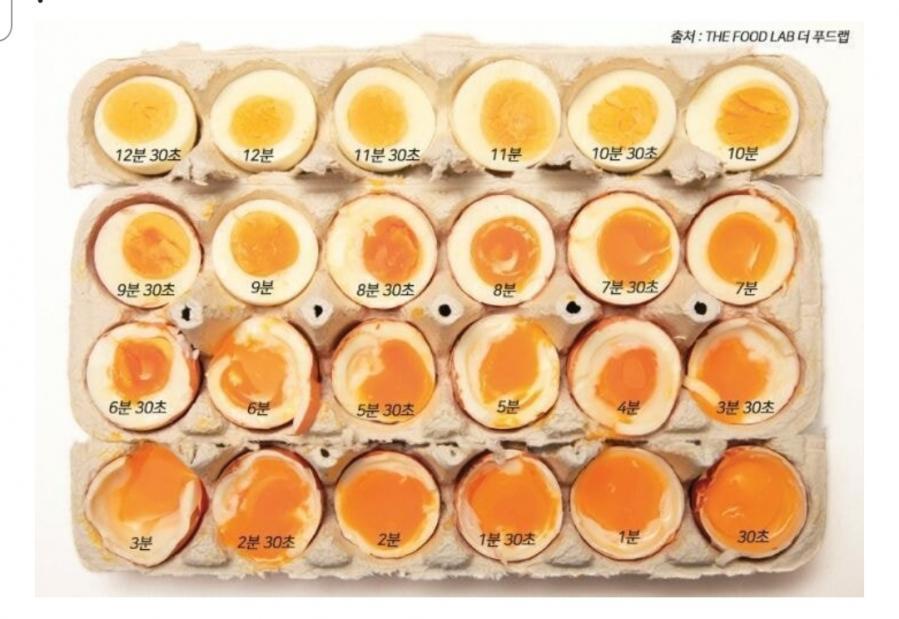 계란 삶을 때 정보