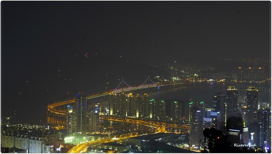 장산꼭대기 야경 촬영