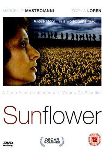 [BP/MOVIE] 해바라기(Sunflower, I Girasoli 1970) - 소피아 로렌